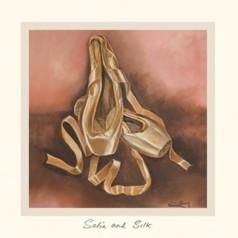 Satin and Silk - DC-4